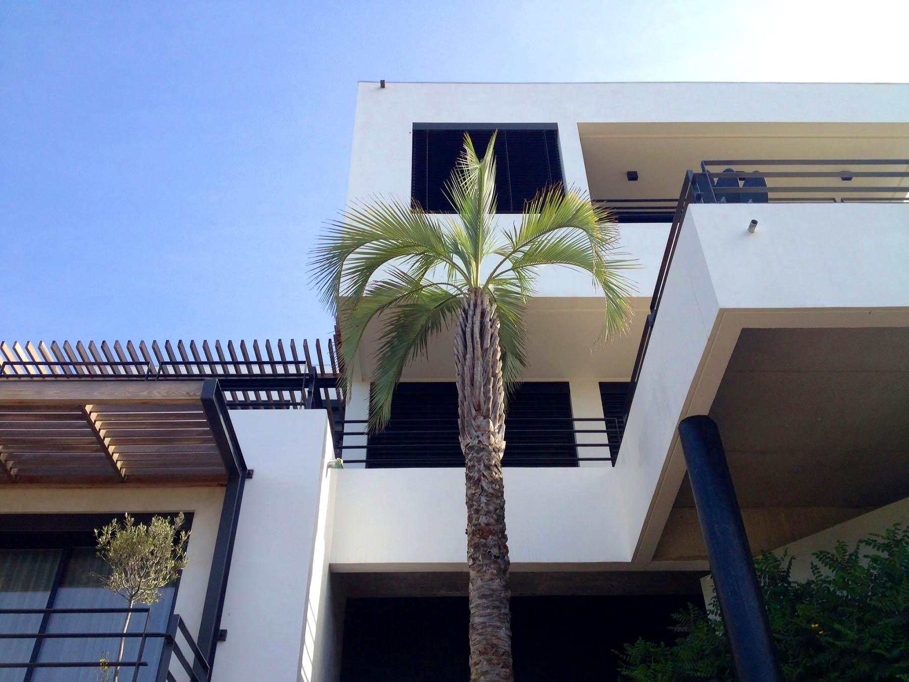 Villa-Pablo-01.jpg